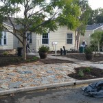 Landscape Design & Partnership
