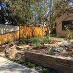 succulent-landscaping-design